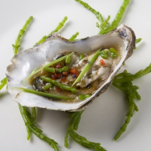 Oysters on marsh samphire in a piquant vinaigrette